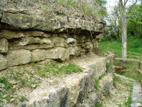 The quarry face at Coombs - Blisworth Limestone.
