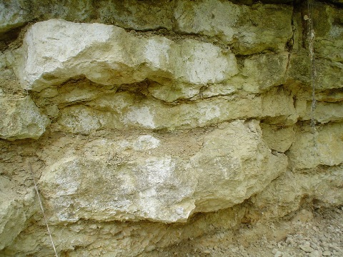 Limestone beds with thin clay partings showing characteristic wavy bedding.