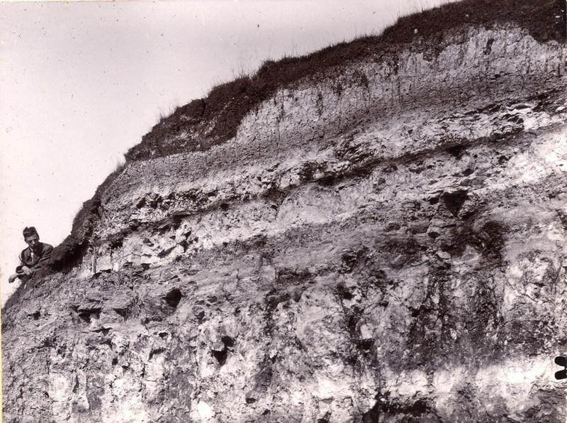 Warren Farm, Stewkley, - Lower Purbeck Formation resting upon Portland Limestone
