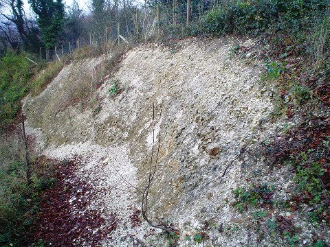 Whiteleaf Quarry.